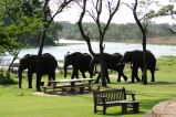 Antelope Park Lodge, Zimbabwe, © Marc d'Entremont
