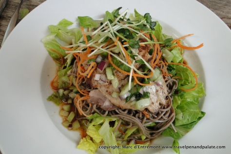 mahi-mahi udon salad at lunch at the Honolulu Museum of Art Cafe