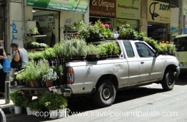 herb & plant car in Athens