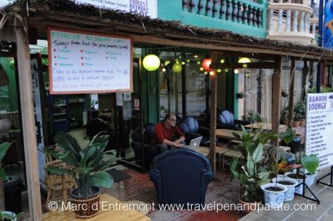 Forest Retreat Laos & author
