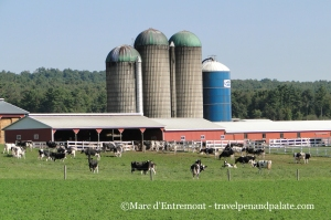 a Pennsylvania dairy farm