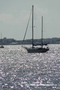 a silver afternoon on Boca de Ciega Bay