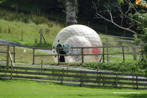 zorbing, Westport House, Ireland