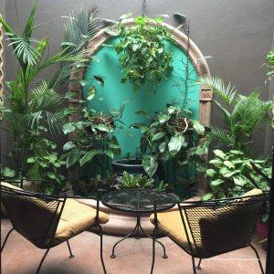 A private guest room garden Hotel Grano de Oro