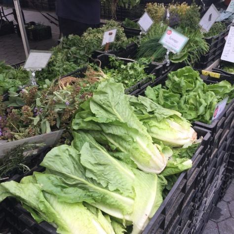 at the Tucker Square Greenmarket