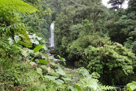La Paz Waterfall Gardens at Peace Lodge