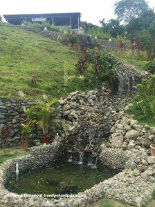 stream at El Faro