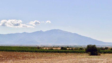 Mount Pangeon