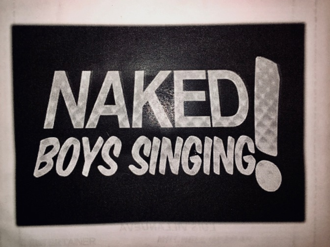 Naked Boys Singing: the ultimate selfie